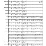 Tonerna BB score sample1