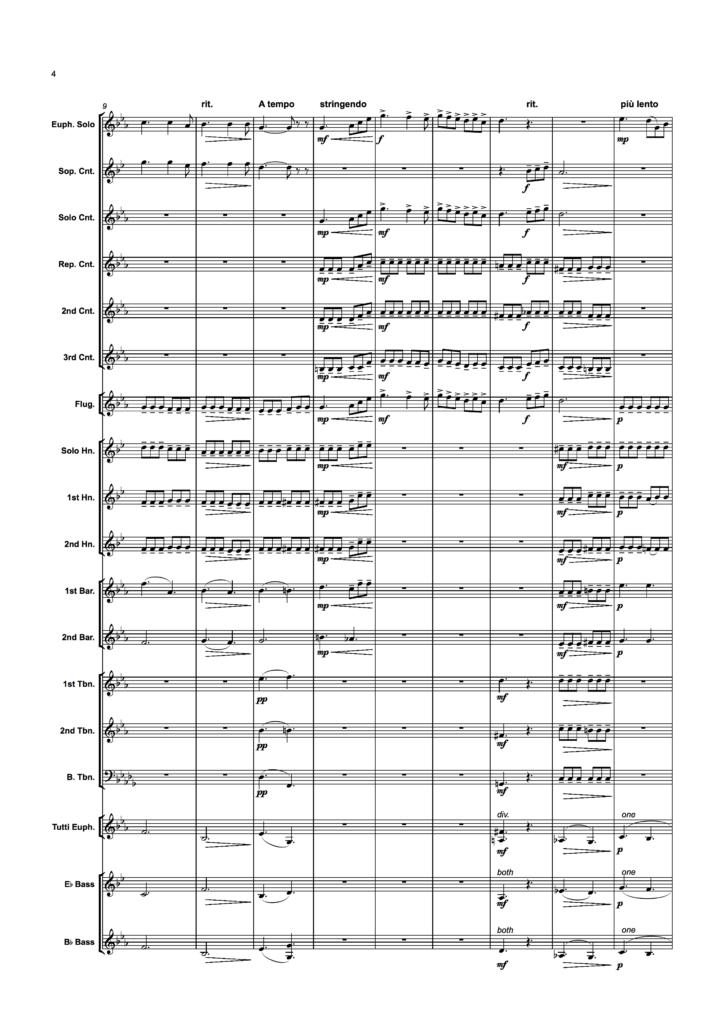 Tonerna BB score sample2